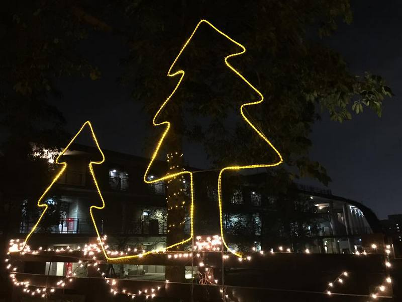 Christmas decorations on campus